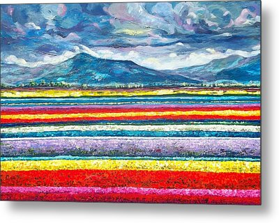 Field Of Dreams Metal Print by Suzanne King