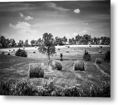 Field Of Hay In Black And White Metal Print