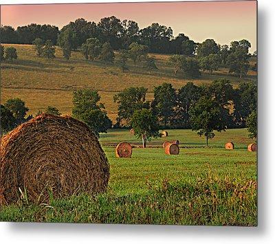 Field Of Hay Metal Print by Steven  Michael