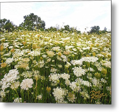 Field Of Lace Metal Print