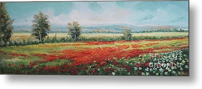 Field Of Poppies Metal Print by Sorin Apostolescu