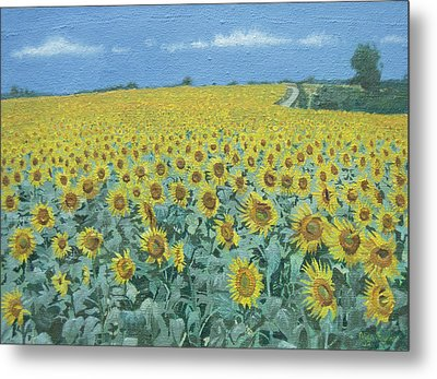 Field Of Sunflowers, 2002 Oil On Canvas Metal Print by Alan Byrne