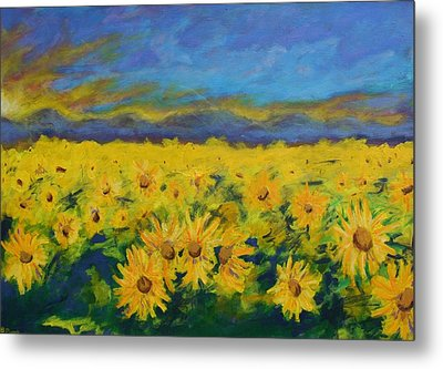 Field Of Sunflowers 2009 Metal Print by Piotr Wolodkowicz