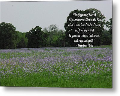 Field Of Treasure Metal Print by Robyn Stacey