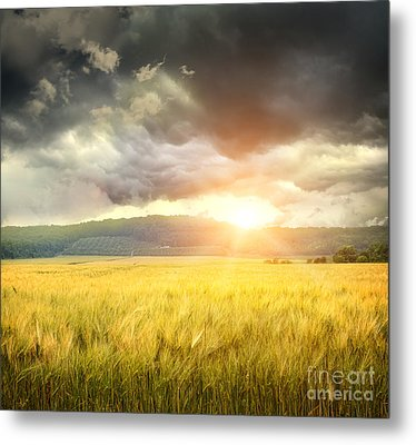 Field Of Wheat With Ominous Clouds  Metal Print by Sandra Cunningham