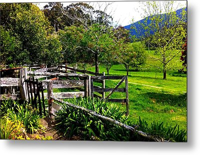 Fields And Fences Metal Print by Marty  Cobcroft