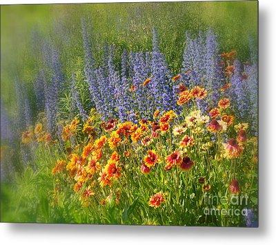 Fields Of Lavender And Orange Blanket Flowers Metal Print by Lingfai Leung