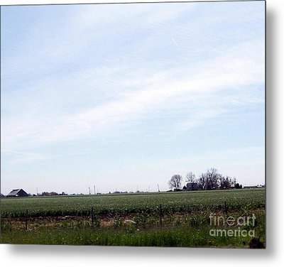 Metal Print featuring the photograph Fields Of Source by Bobbee Rickard