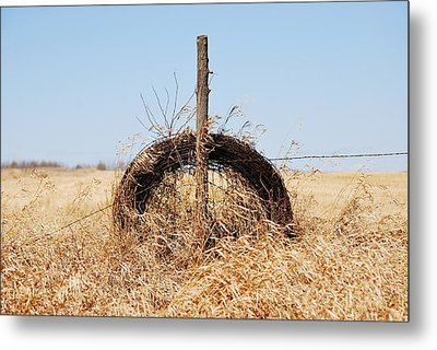 fields That Feed Metal Print by Jerry Cordeiro