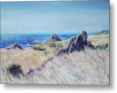 Fields With Rocks And Sea Metal Print by Asha Carolyn Young