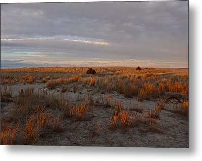 Metal Print featuring the photograph Fiery Dunes by Amazing Jules