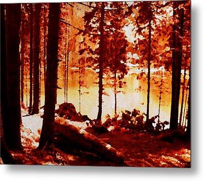 Fiery Red Landscape Metal Print