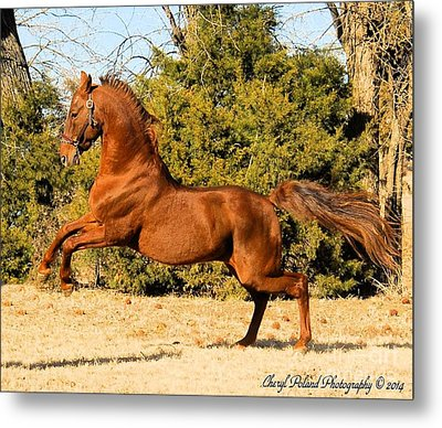 Fiery Spirit Metal Print