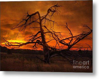 Fiery Sunrise Metal Print