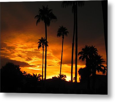 Metal Print featuring the photograph Fiery Sunset by Deb Halloran