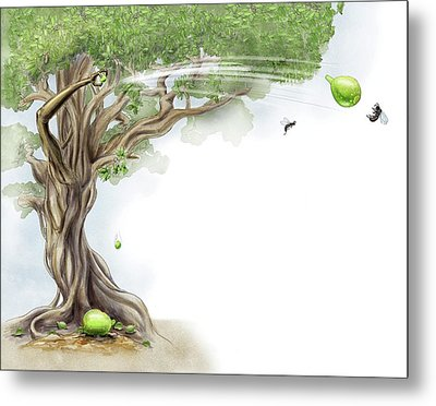 Fig Tree And Wasp Metal Print