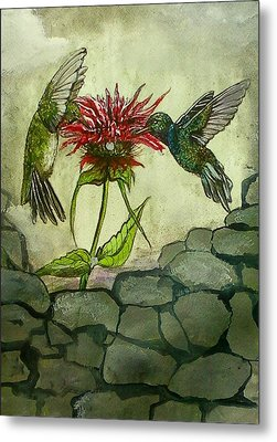 Fight Of The Hummingbirds Metal Print