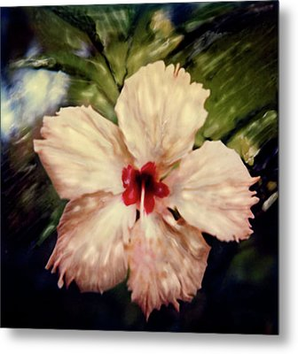 Metal Print featuring the photograph Fiji Magic by Paul Cutright