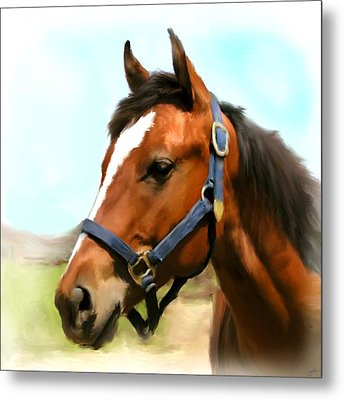 Filly Metal Print by Paul Tagliamonte