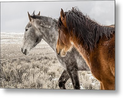 Metal Print featuring the photograph Finally Free by Yeates Photography