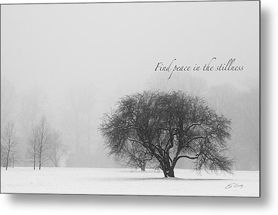 Find Peace In The Stillness Metal Print