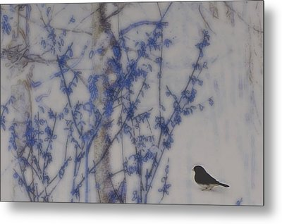 Finding His Way Metal Print by Barbara S Nickerson