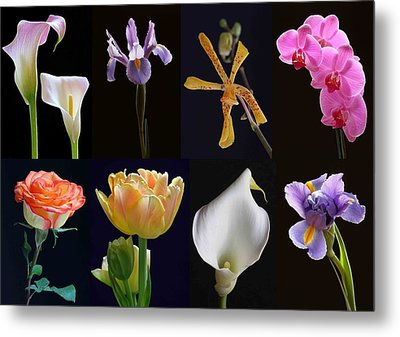 Fine Art Flower Photography Metal Print by Juergen Roth