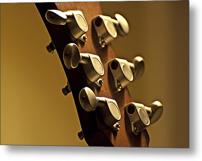 Finely Tuned Metal Print by Christopher Gaston