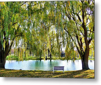 Metal Print featuring the photograph Finger Lakes Weeping Willows by Mitchell R Grosky