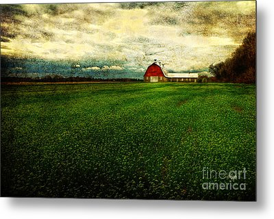 Finished Metal Print by Lois Bryan