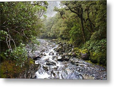 Fiordland National Park New Zealand Metal Print by Venetia Featherstone-Witty