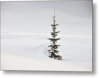 Fir Tree And Lots Of Snow In Winter Kleinwalsertal Austria Metal Print by Matthias Hauser