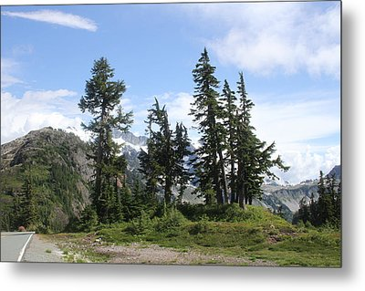 Metal Print featuring the photograph Fir Trees At Mount Baker by Tom Janca