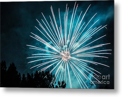 Fire Flower Metal Print by Suzanne Luft
