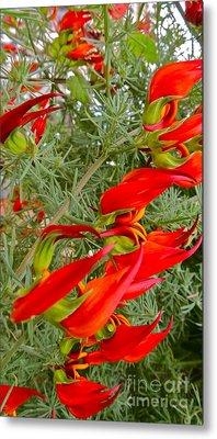 Fire Flowers Metal Print