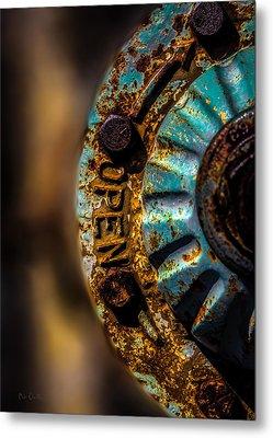Fire Hydrant  Metal Print by Bob Orsillo