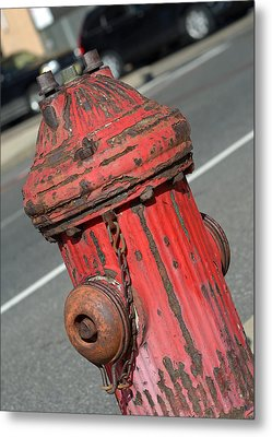 Fire Hydrant Metal Print by Lisa Phillips