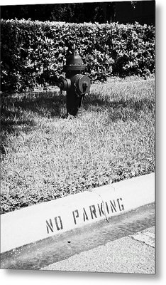 Fire Hydrant No Parking Curb In Residential Area Of Celebration Florida Usa Metal Print by Joe Fox