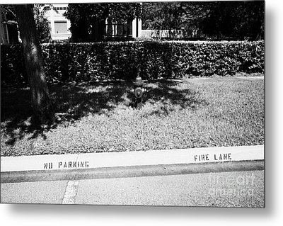 Fire Hydrant No Parking Fire Lane Curb In Residential Area Of Celebration Florida Us Metal Print by Joe Fox