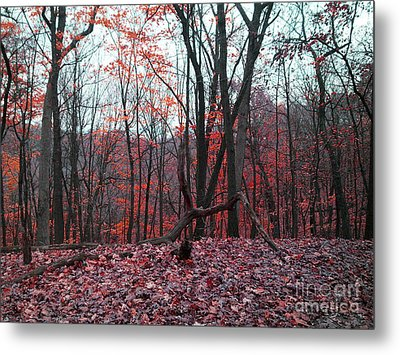 Fire In The Woodland Metal Print