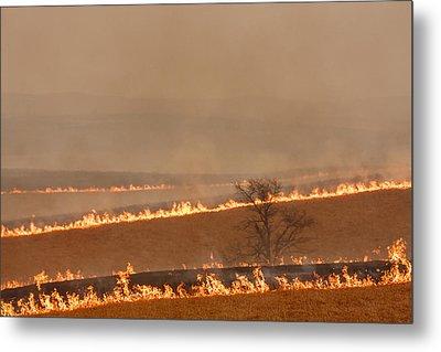Fire Lines Metal Print by Scott Bean