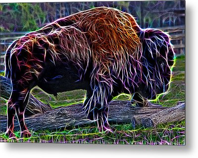 Fire Of A Bison  Metal Print by Miroslava Jurcik