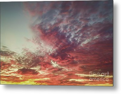 Fire Sky Metal Print by Holly Martin