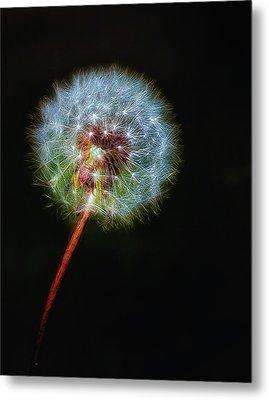 Firework Dandelion Metal Print by Bill Tiepelman