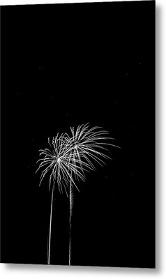 Firework Palm Trees Metal Print by Darryl Dalton
