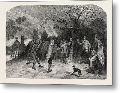 Firing At The Apple Tree, In Devonshire, Uk Metal Print