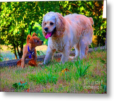 First Anniversary Image Angel And Chika Metal Print by Tina M Wenger