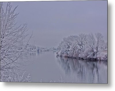 Metal Print featuring the photograph First Frost by Lynn Hopwood