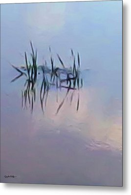 First Reeds Of Spring Metal Print by Spyder Webb