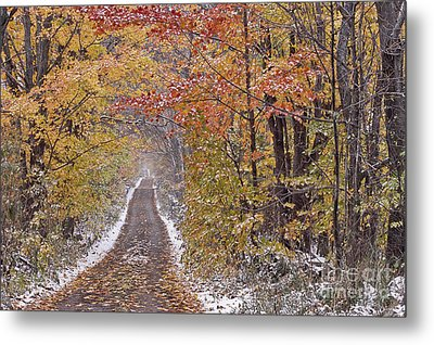 Metal Print featuring the photograph First Snow by Alan L Graham